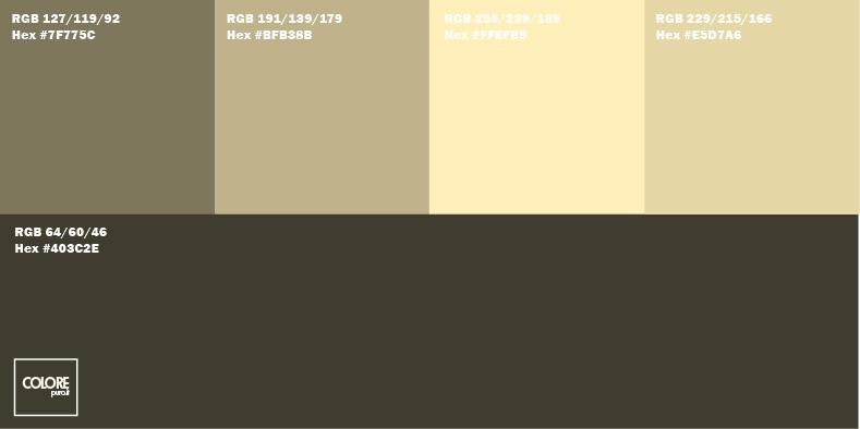 Tabella 5 colori nei toni del marrone